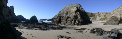 Bodega Head, California