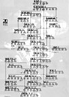 Jethro Tull family tree, by Pete Frame